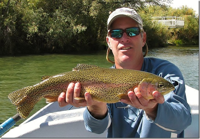 Colorado fishing report from anglers for Colorado river fishing report