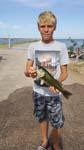 Cheney fish